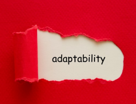 Be Adaptable. / Adapt and Pivot - Staying aglie in an everchanging world